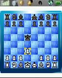 Cotopia Chess
