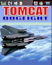 F14 Tomcat Dogfight